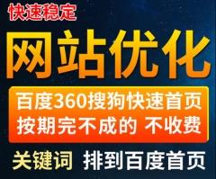 网站首页优化baidu收录搜狗seo排名360关键快速照恢复词神马推广