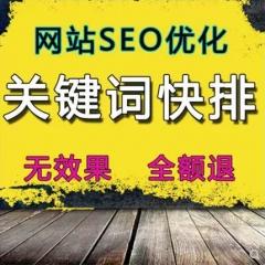 网站首页优化baidu收录搜狗seo排名360关键词快速照恢复神马推广